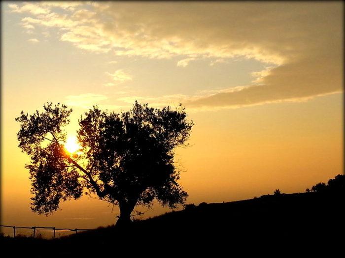 diario del mio viaggio in sicilia