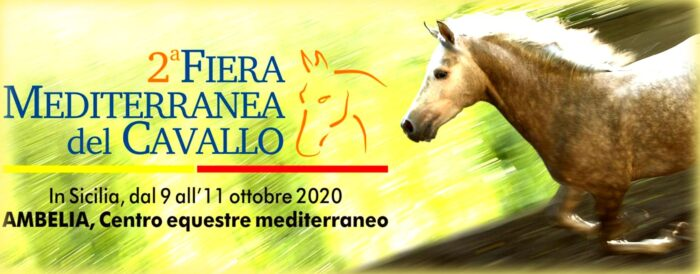 seconda fiera mediterranea del cavallo in sicilia