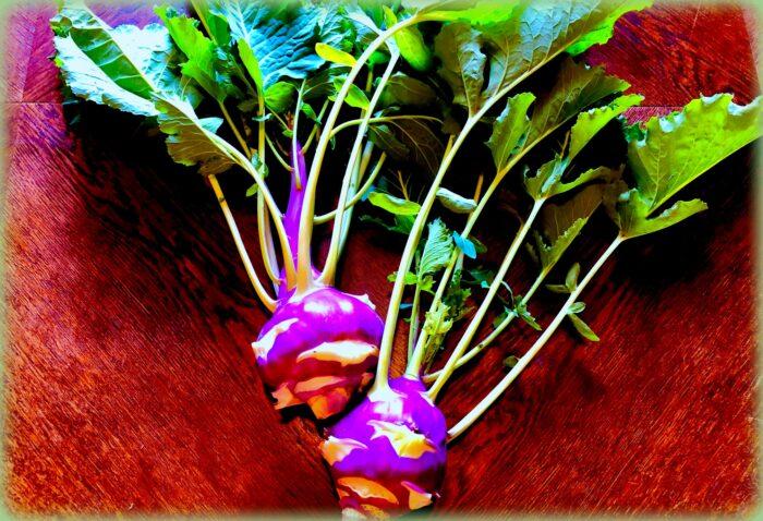 pasta col cavolo rapa: il cavolo rapa viola... foto di saverio garufi