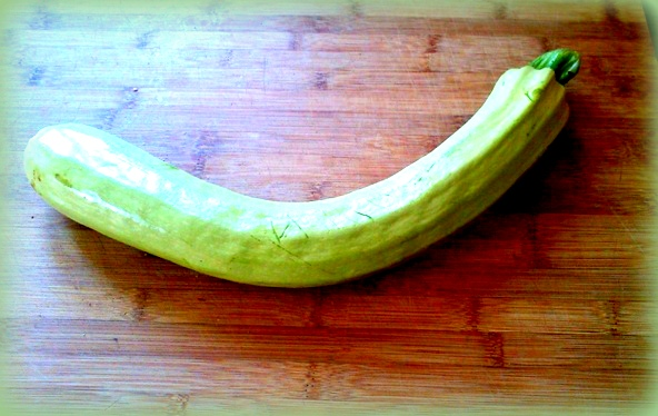 pasta con le zucchine fritte: la zucchina napoletana