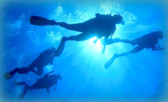 Local Experiences: l'Estate 2021 in Sicilia è liberi di viaggiare! Immersione guidata a Isola delle Femmine